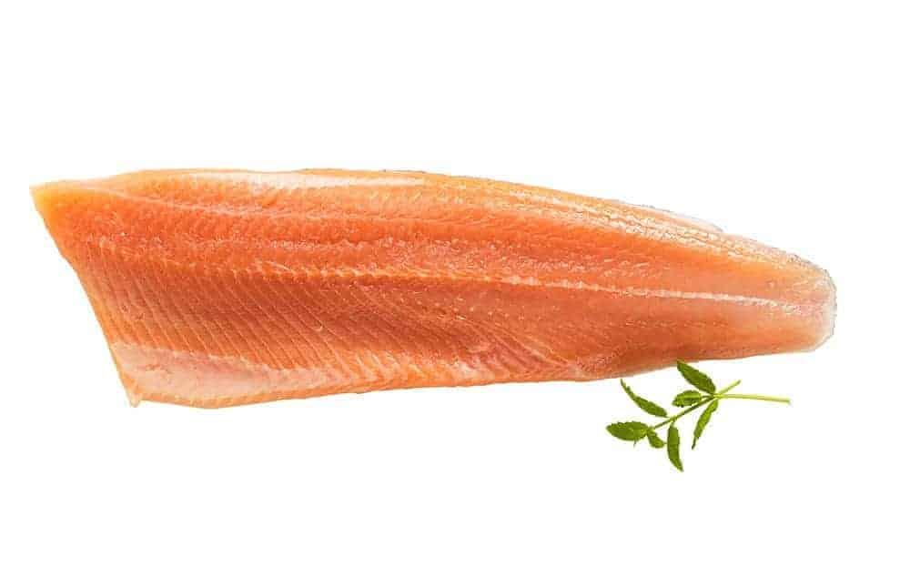 Kalaneuvos tuore taimenfilee