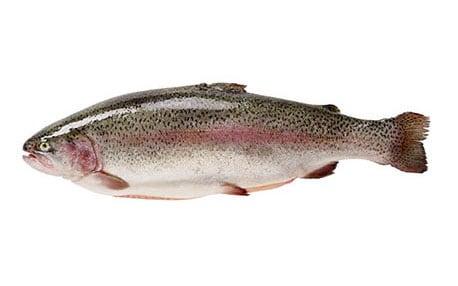 Trout, whole