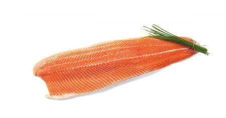 Tuoreet kalat