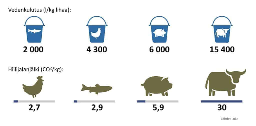 Kala on ympäristöystävällinen proteiininlähde