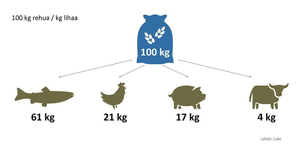 Kalankasvatuksen tehokkuuslukuja